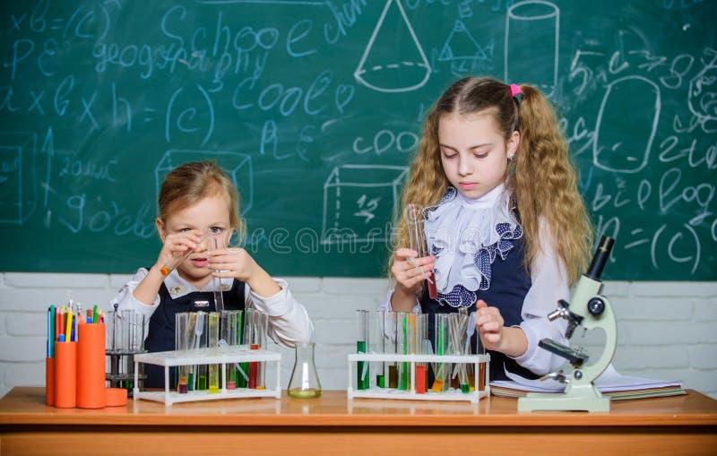 Het verbeteren van hun studievaardigheden Studiegroep in chemielaboratorium Weinig schoolkinderen die reageerbuizen houden tijden stock afbeeldingen