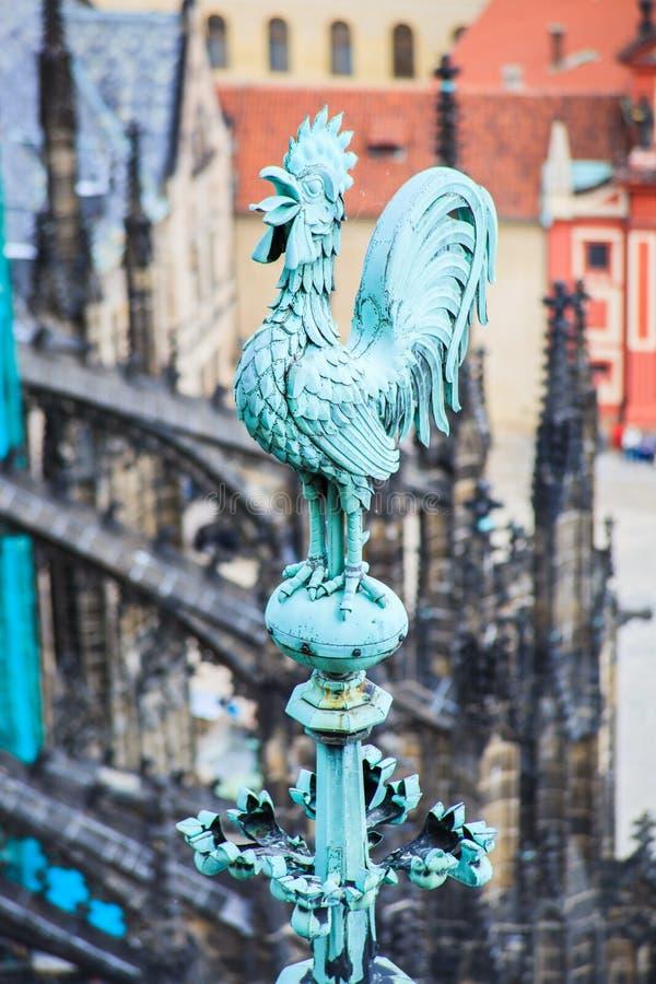 Het verfraaien van haan in Praag stock foto's