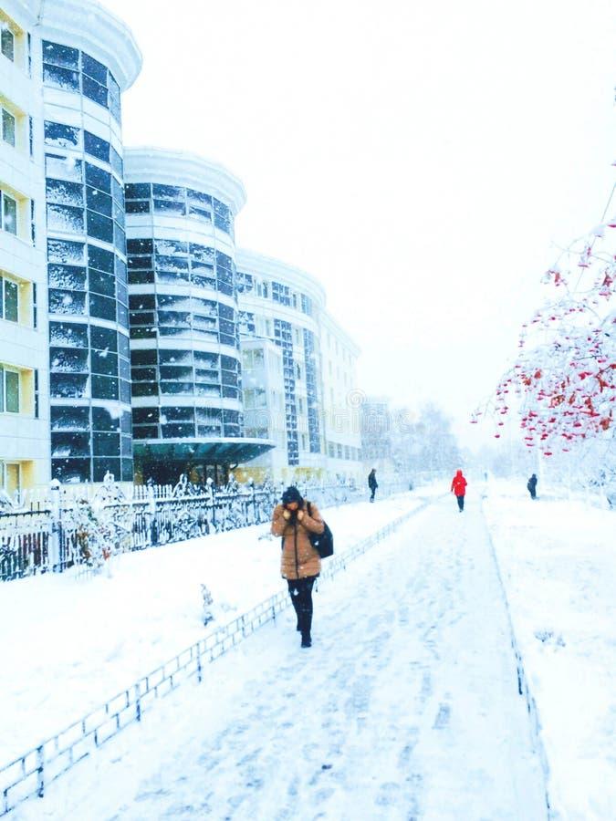 Het Verhaal van de Winter stock foto's