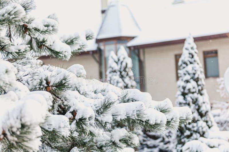 Het verhaal van de de winterfee Snow-covered pijnboom op achtergrond van kasteel royalty-vrije stock afbeelding