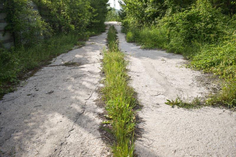 Het verlaten asfalt barstte weg met overwoekerde installaties en gras in een godvergeten gat in één of andere spookstad Het conce stock fotografie