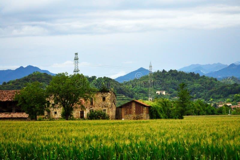 Het verlaten oude landbouwbedrijf huisvest gebied van graan Lombardije Italië stock fotografie