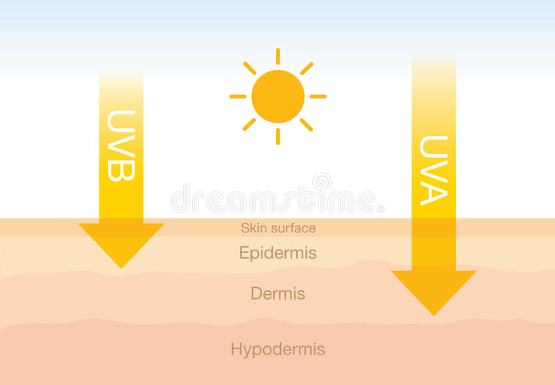 Het verschil van straling 2 types in zonlicht met huid vector illustratie