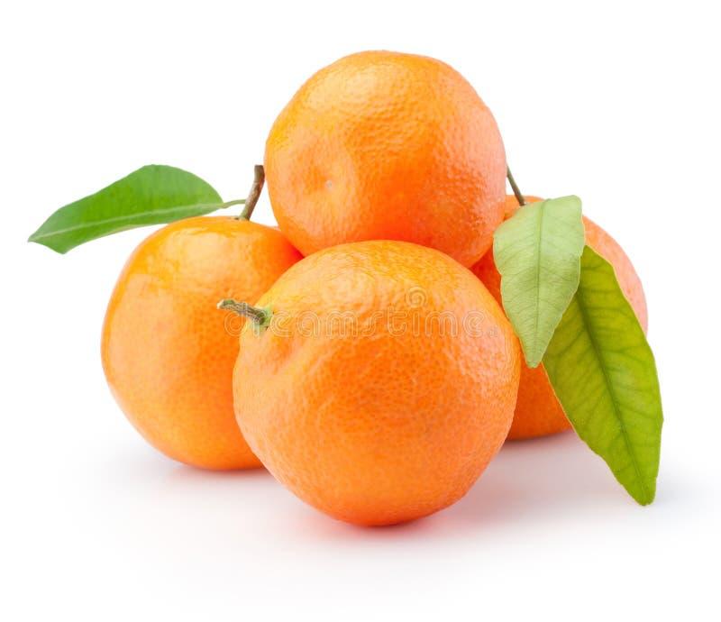 Het verse die fruit van mandarijnensinaasappelen met bladeren op witte achtergrond worden geïsoleerd stock foto
