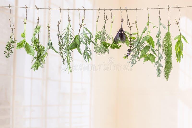 Het verse flovouring en geneeskrachtige installaties en kruiden die op een koord, voor een binnenbackgroung hangen stock foto