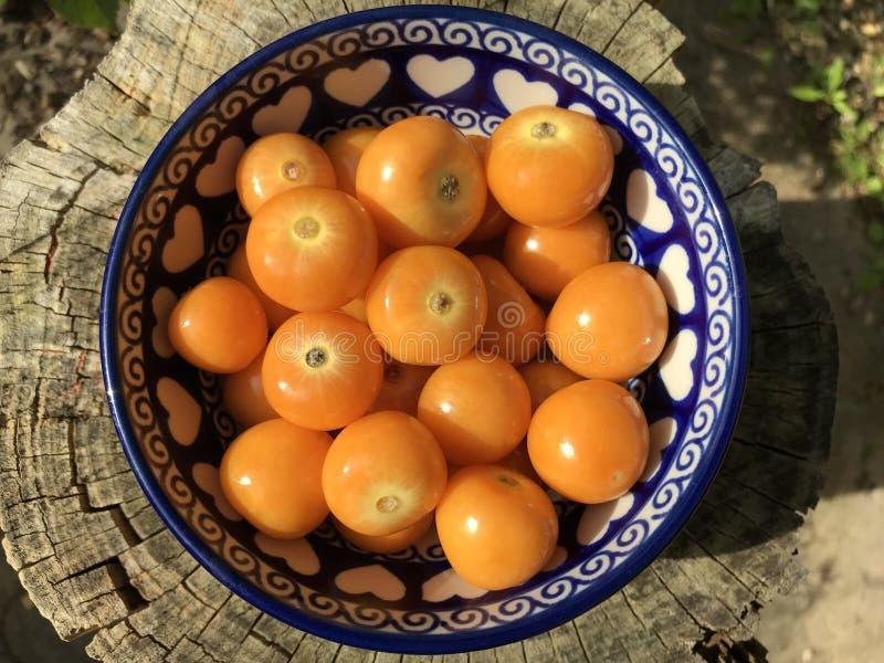Het verse fruit, rijpe en sappige Physalis zijn een kom stock fotografie