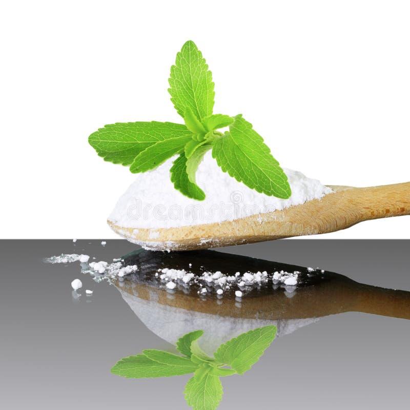 Het verse groene poeder van Stevia en van het uittreksel in houten lepel op witte achtergrond royalty-vrije stock foto's