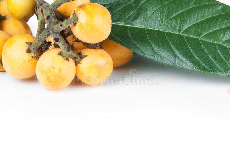 Het verse rijpe fruit van de loquat Japanse mispel met tak en blad op witte achtergrond royalty-vrije stock fotografie