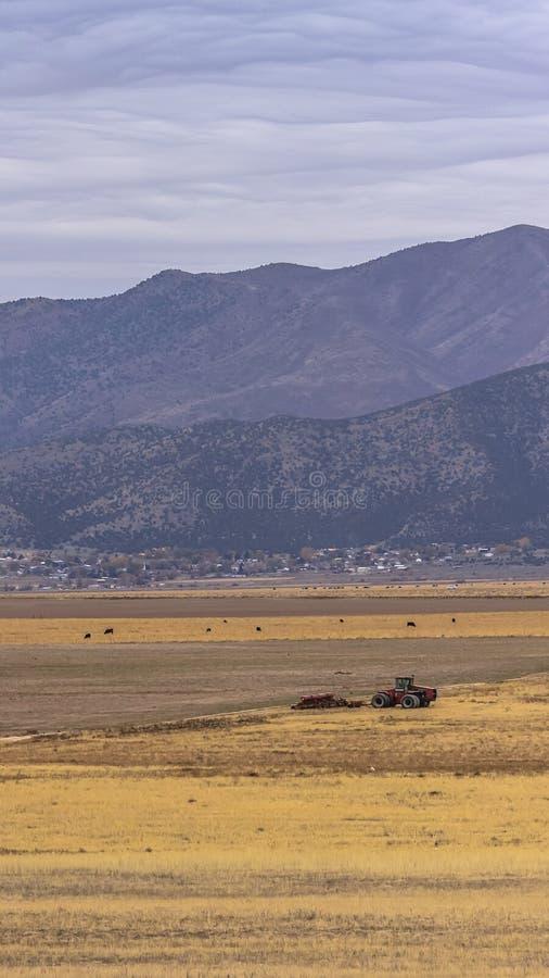 Het verticale Panorama van een tractor op een enorm grasrijk gebied onder de wolk vulde hemel stock afbeelding