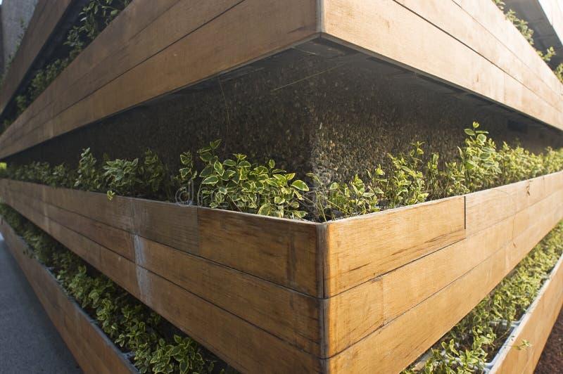 Het verticale planten stock afbeelding