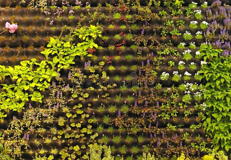 Het verticale tuinieren royalty-vrije stock afbeeldingen