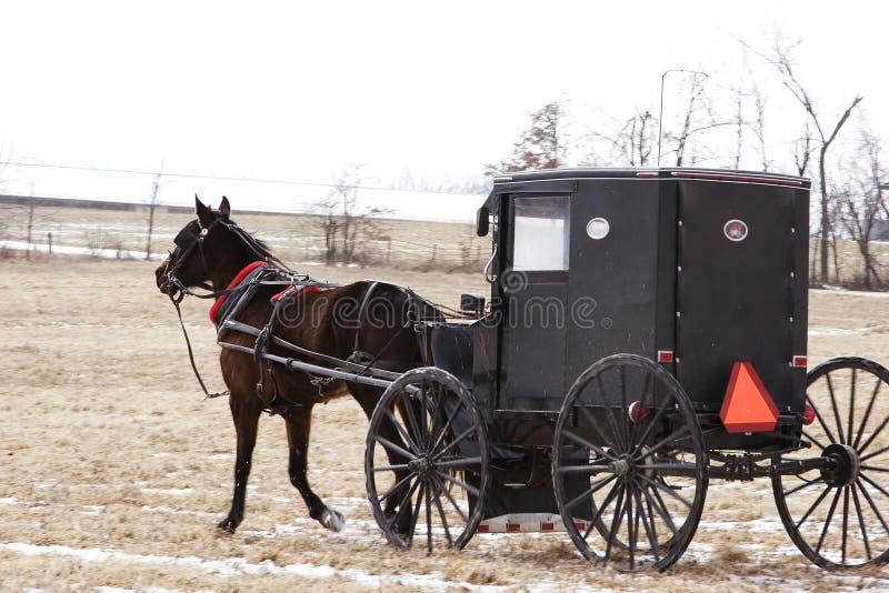 Het vervoer van Amish stock foto