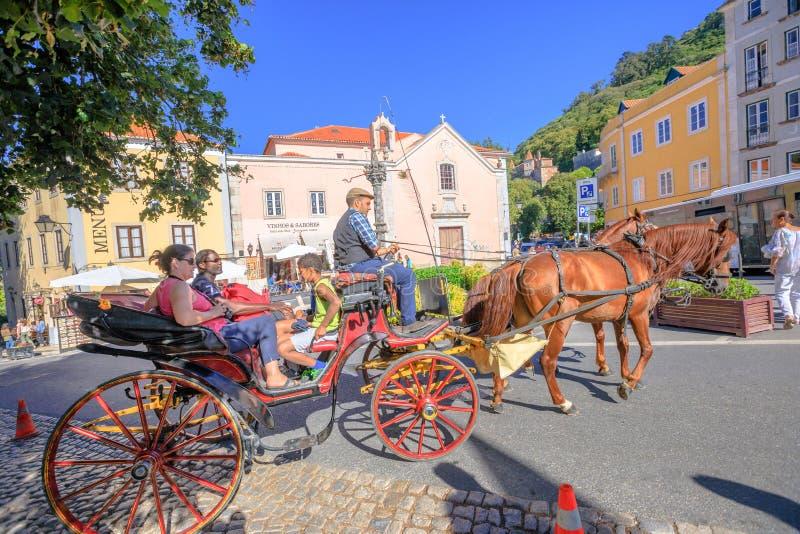 Het vervoer van het Sintrapaard royalty-vrije stock foto