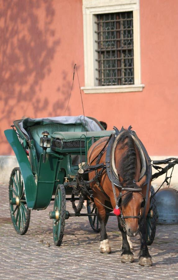 Het vervoer van Warshau Hackneypaard stock foto
