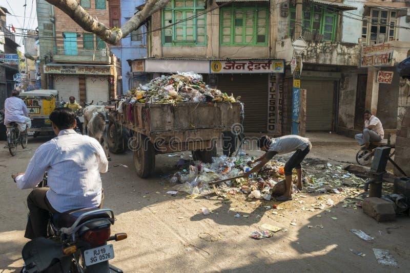 Het verzamelen van afval in Jodhpur, India stock fotografie