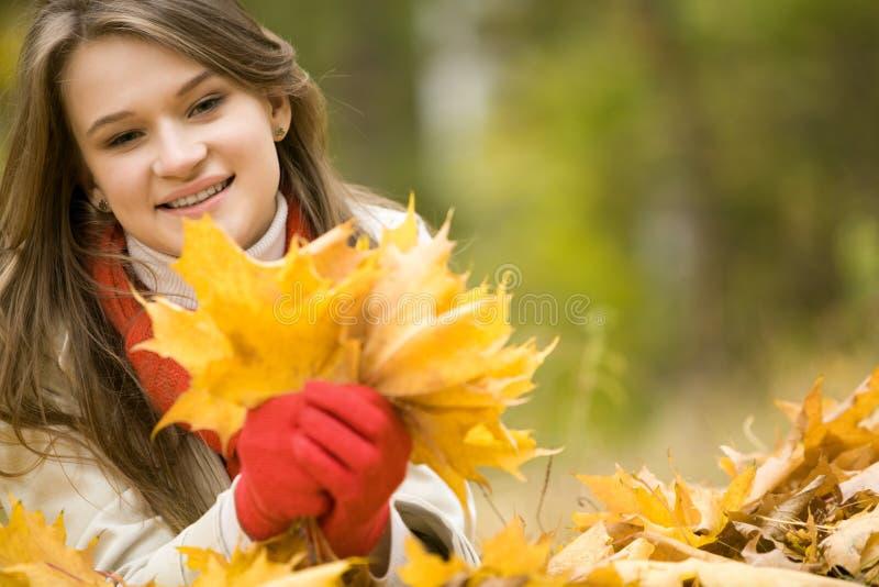 Het verzamelen van dalende bladeren stock afbeeldingen
