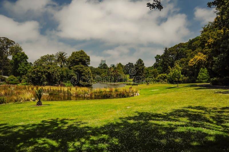 Het verzorgen en schoonheid van de parken royalty-vrije stock foto