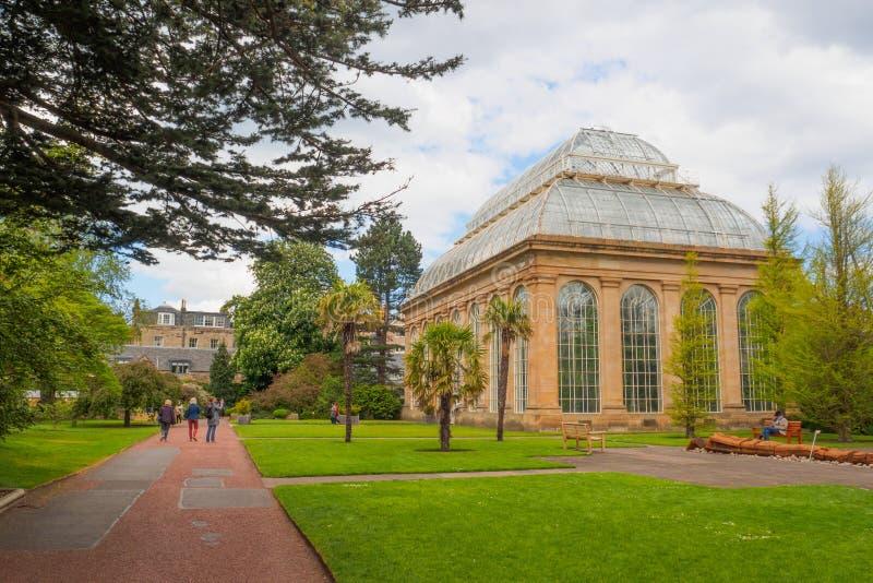 Het Victoriaanse Palmhuis bij de Koninklijke Botanische Tuinen, een openbaar park in Edinburgh, Schotland, het UK stock afbeelding