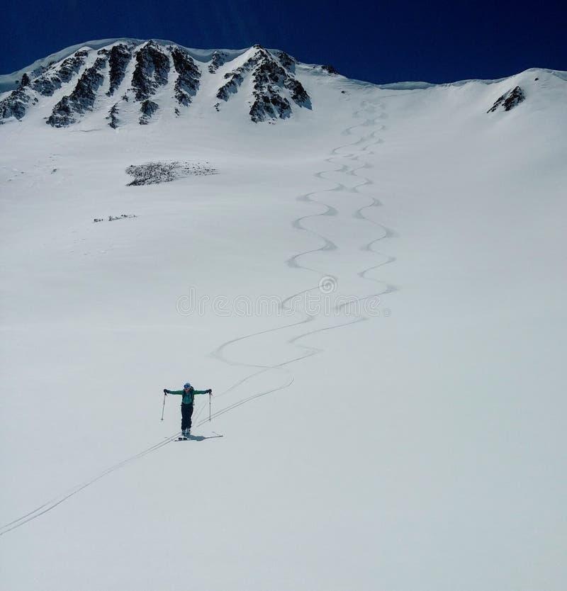 Het vieren van een succesvolle backcountry skiafdaling royalty-vrije stock foto