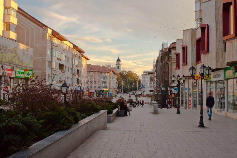 Het vierkant van de Suceavastad stock foto's