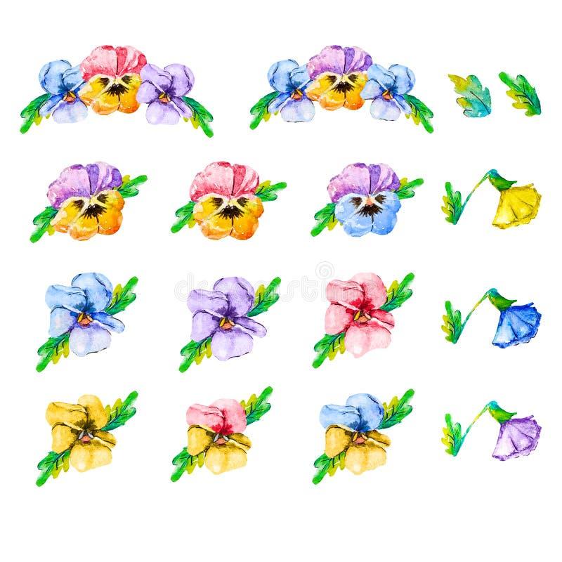 Het vierkante kader van violet de altvioolviooltje van waterverf bloeiend tricolor bloeit op een witte achtergrond met exemplaarr stock illustratie