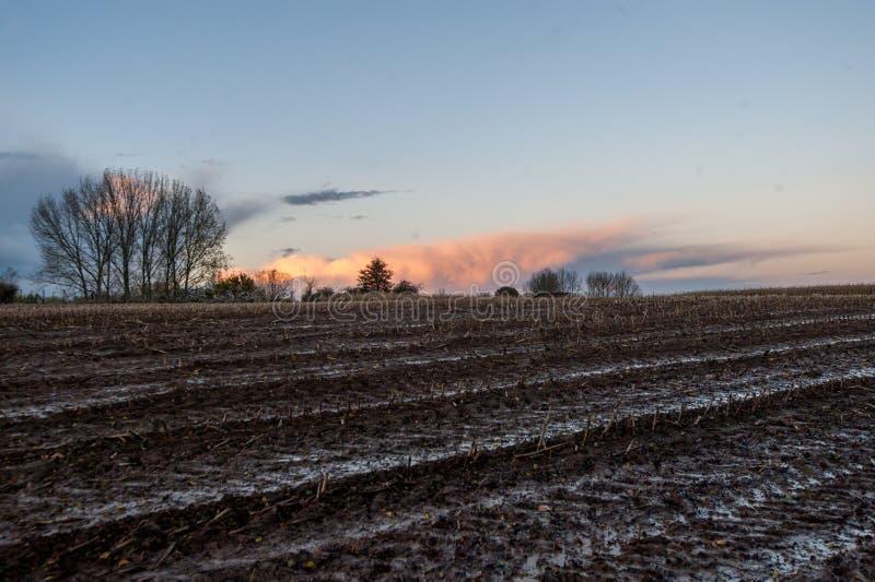 Het Vlaamse landschap van het oosten bij schemer royalty-vrije stock fotografie