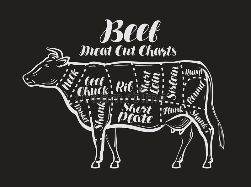 Het vlees sneed grafieken Koe, rundvleesconcept Menurestaurant of slagerij Vector illustratie stock illustratie