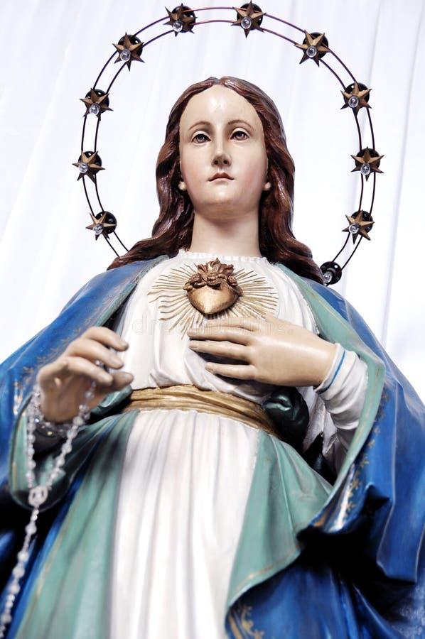 Het Vlekkelooze Hart van het standbeeld van Mary royalty-vrije stock foto