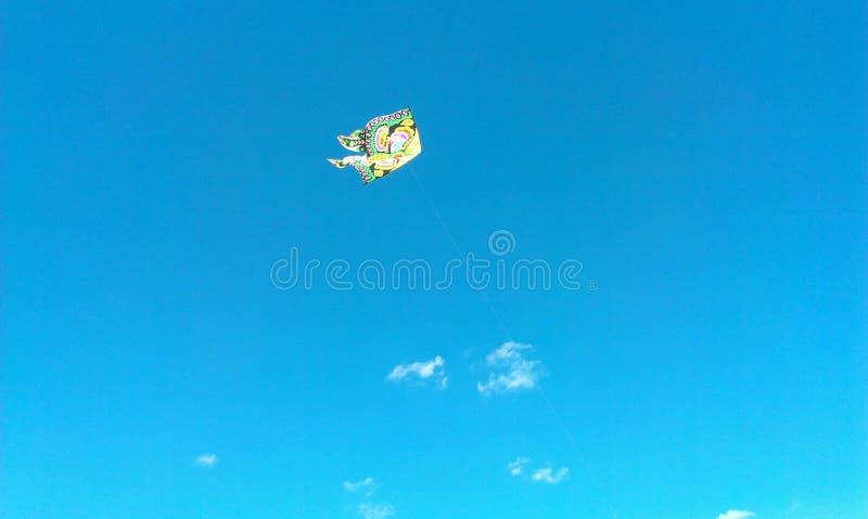 Het vliegen in sommer stock foto's