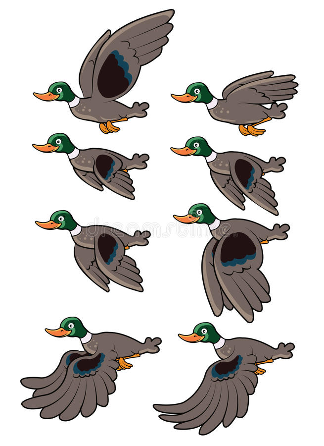 Het Vliegen van de vogel Animatie
