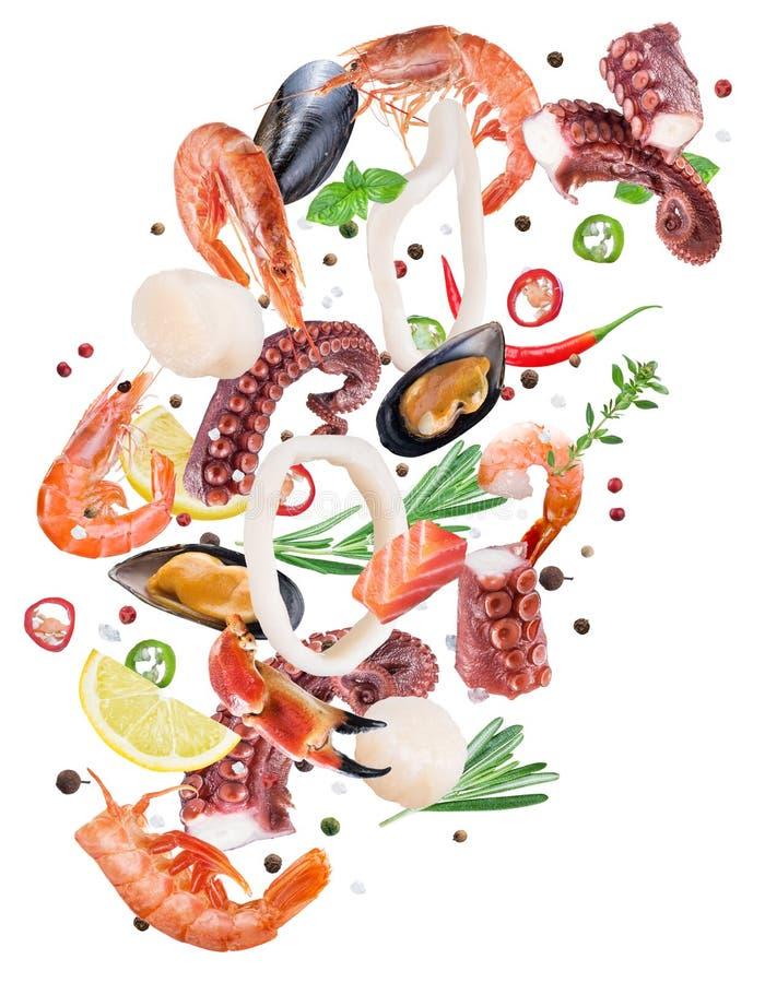 Het vliegen zeevruchtenstukken en kruiden op witte achtergrond Dossierconta stock foto's