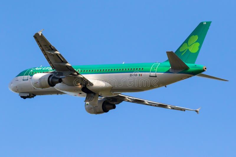 Het vliegtuig van de de Luchtbusa320 passagier van luchtlingus royalty-vrije stock foto
