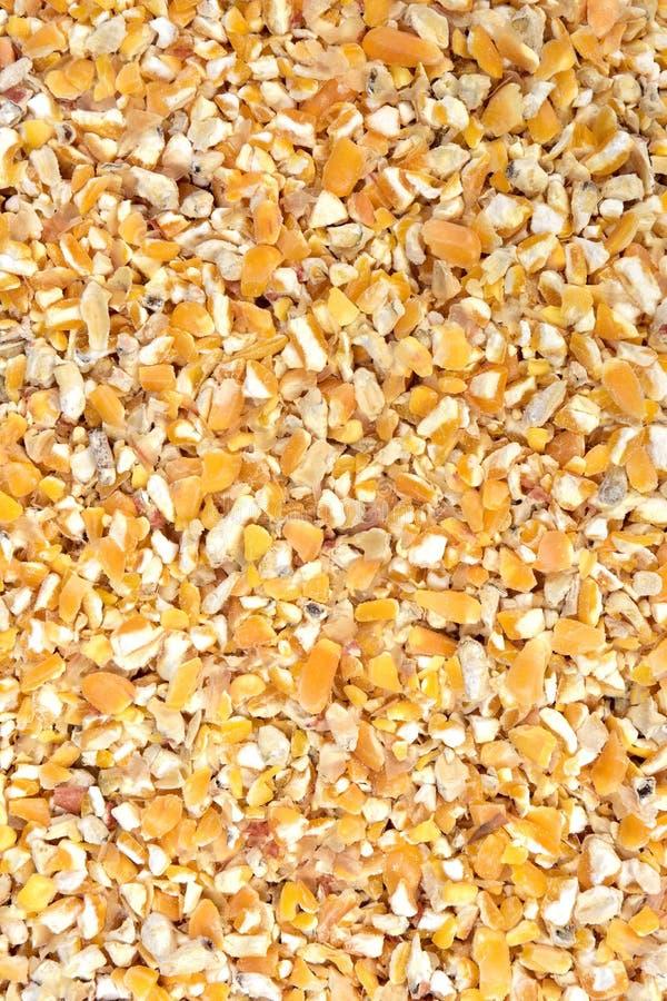 Het voedsel van de graanpartij voor kippen stock foto