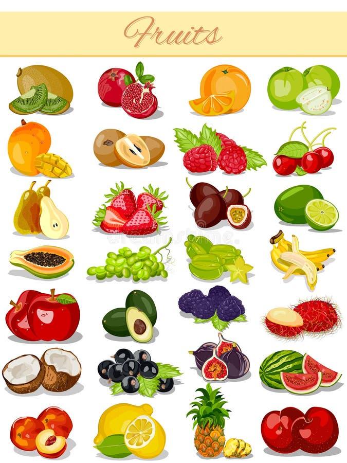 Het Voedselinzameling van het fruitproduct stock illustratie