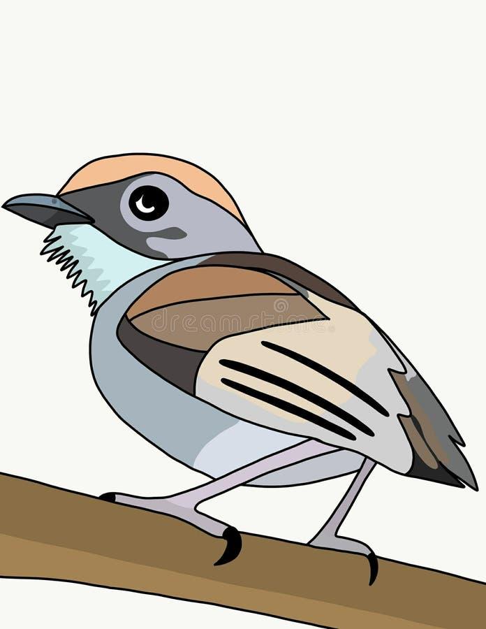 Het voer van de vogelgans royalty-vrije illustratie