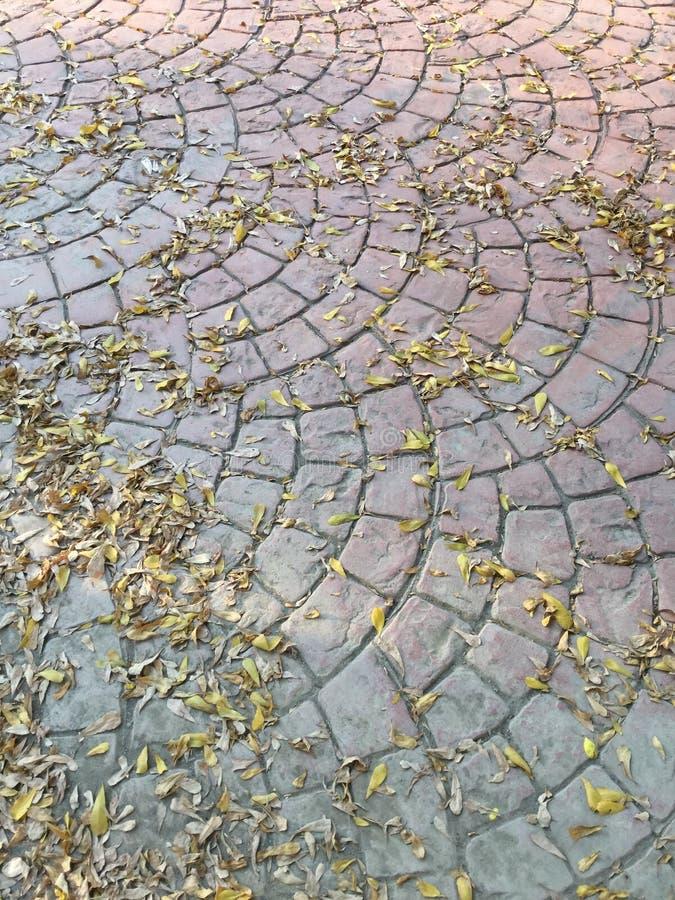 Het voetpad van de steenbaksteen royalty-vrije stock foto