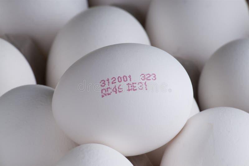 Het volgen code en versheids oo eieren stock afbeelding
