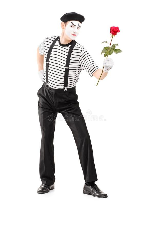 Het volledige lengteportret van bootst asrtist na die een roze bloem geven stock afbeeldingen