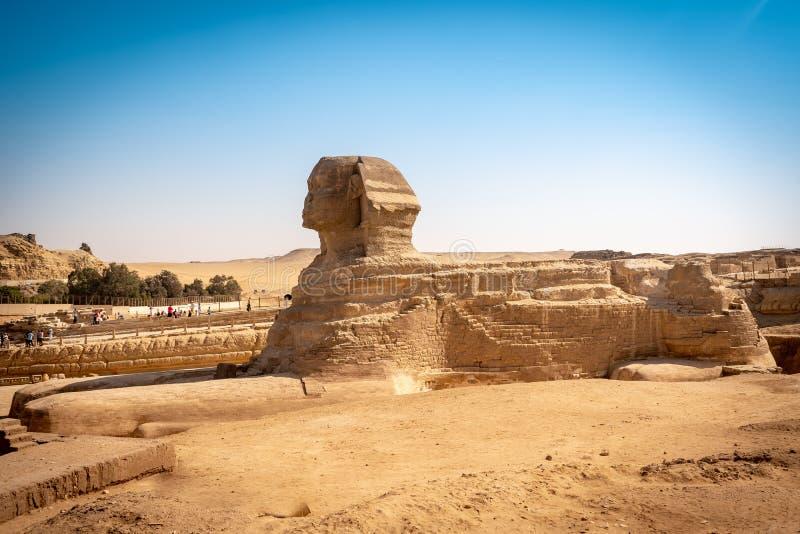 Het volledige profiel van de Grote Sfinx met de piramide in bac stock afbeeldingen