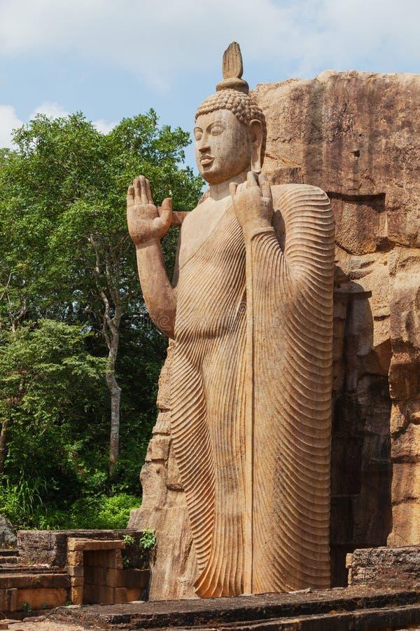 Het volledige standbeeld van hoogteavukana bevindt zich standbeeld van Boedha Srilan royalty-vrije stock afbeeldingen