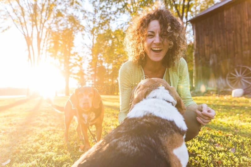 Het volwassen vrouw spelen met haar honden bij park stock afbeeldingen