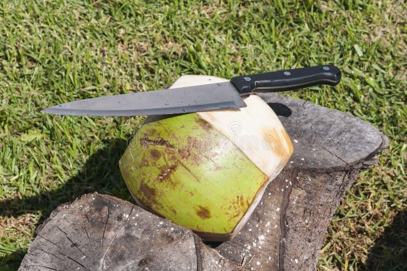 Het voorbereiden van een kokosnoot stock afbeeldingen