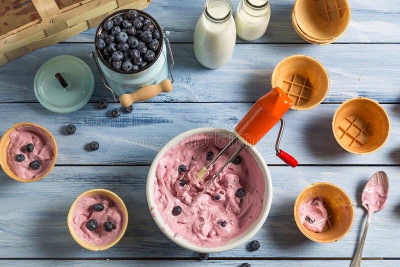 Het voorbereiden van eigengemaakt fruitroomijs royalty-vrije stock afbeelding