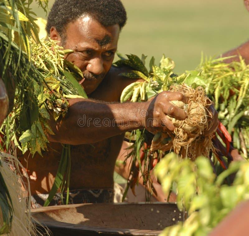 Het voorbereiden van Kava royalty-vrije stock fotografie