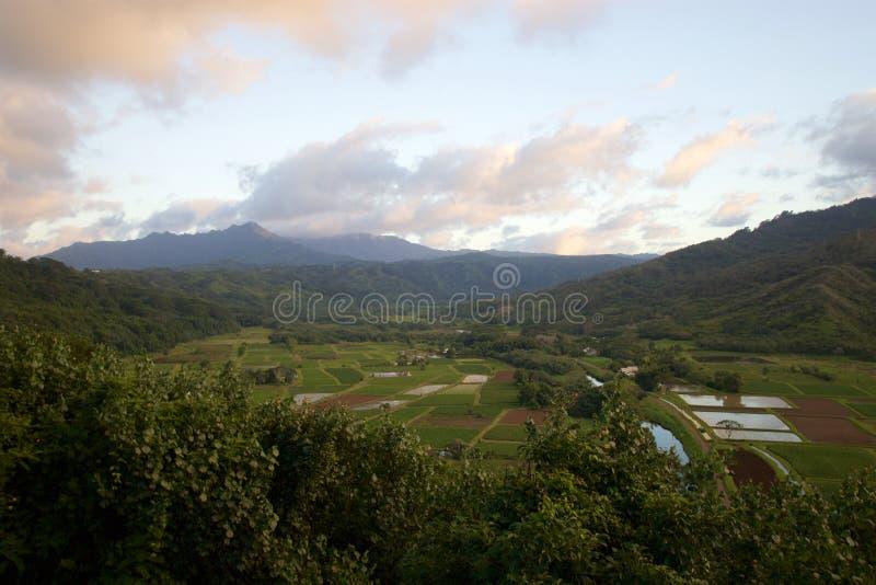 Het Vooruitzicht van de Hanaleivallei royalty-vrije stock fotografie