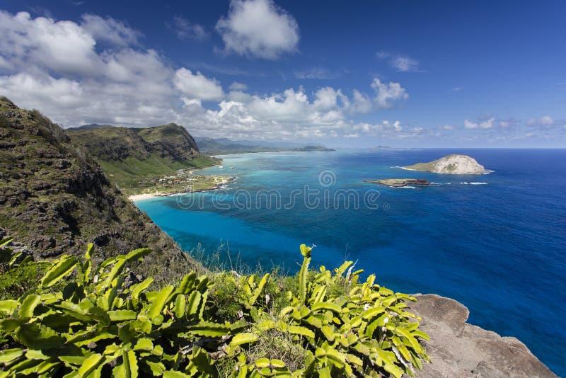 Het Vooruitzicht van het Makapuupunt, Oahu royalty-vrije stock foto