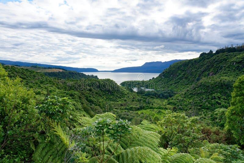 Het vooruitzicht van meertarawera dichtbij Rotorua stock foto's