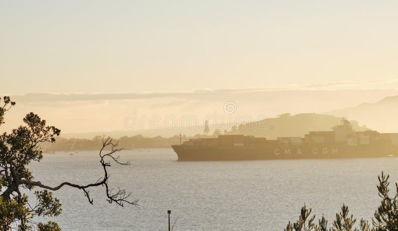 Het vrachtschip gaat in de haven van Auckland in zonsopgangmist stock foto's