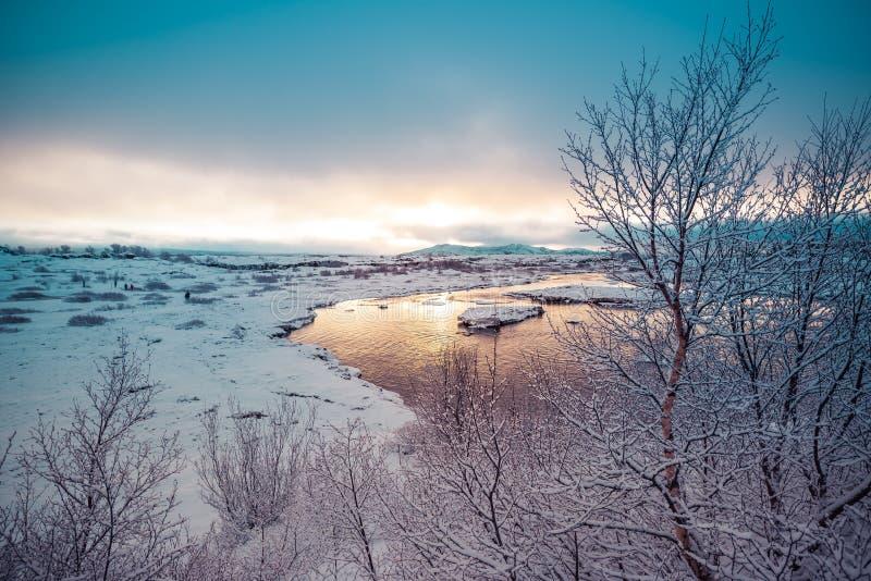 Het vroege landschap van de ochtendwinter royalty-vrije stock afbeelding