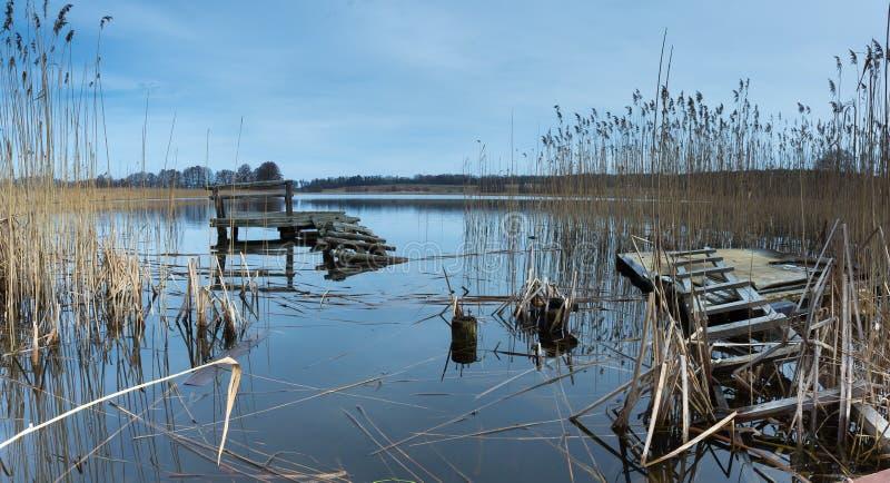 Het vroege landschap van het de lentemeer stock afbeelding